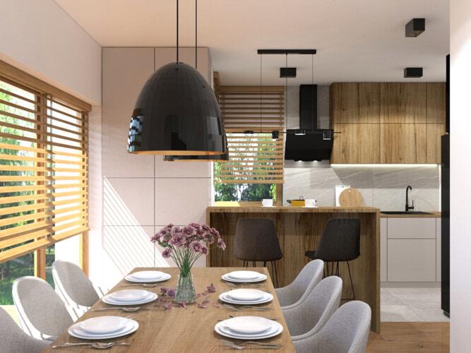 Projekt wnętrz domu - nowoczesna kuchnia